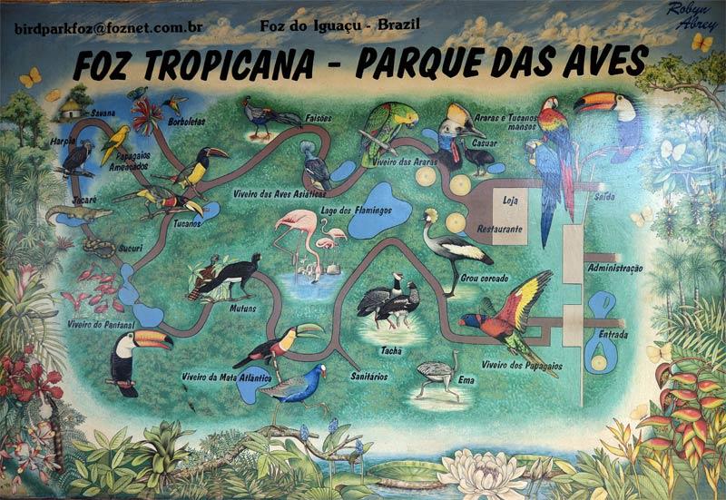 Парк Птиц. Игуасу. Бразилия. Bird Park. Iguacu. Brasil. 2