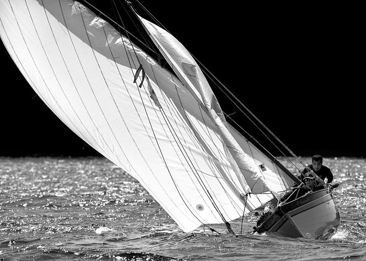 Latin Sails