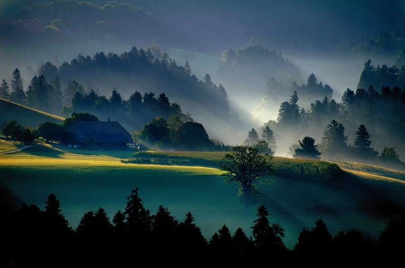 Emmental Sunrise