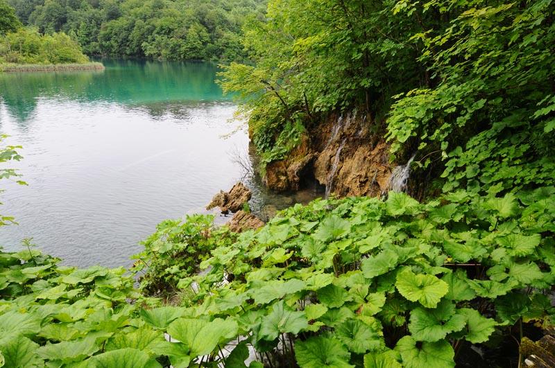 Плитвицкие озёра. Хорватия. Plitvice Lakes. 48.