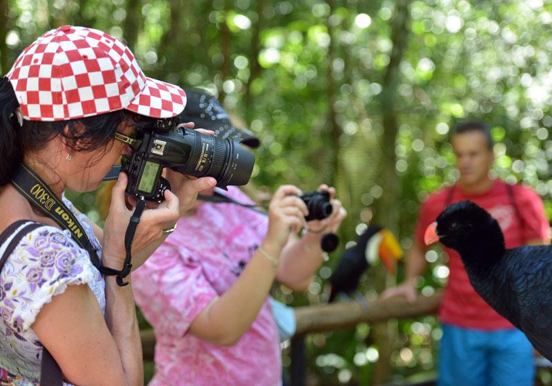 Парк Птиц. Игуасу. Бразилия. Bird Park. Iguacu. Brasil. 25