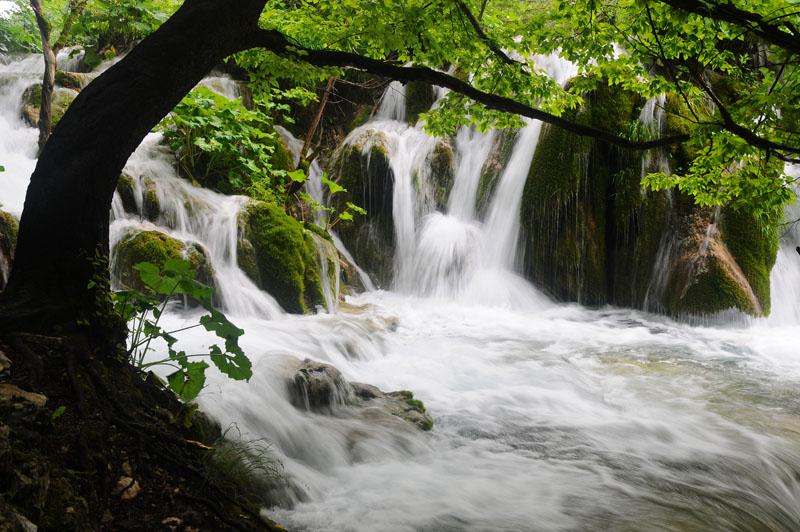 Хорватия. Плитвицкие озера. Croatia. Plitvice. 39