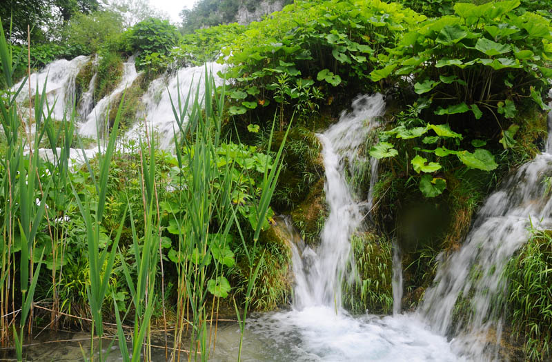 Хорватия. Плитвицкие озера.  Croatia. Plitvice Lakes. 46