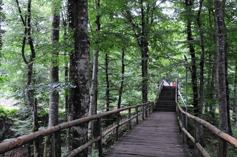 Хорватия. Плитвицкие озера. Croatia. Plitvice. 4.