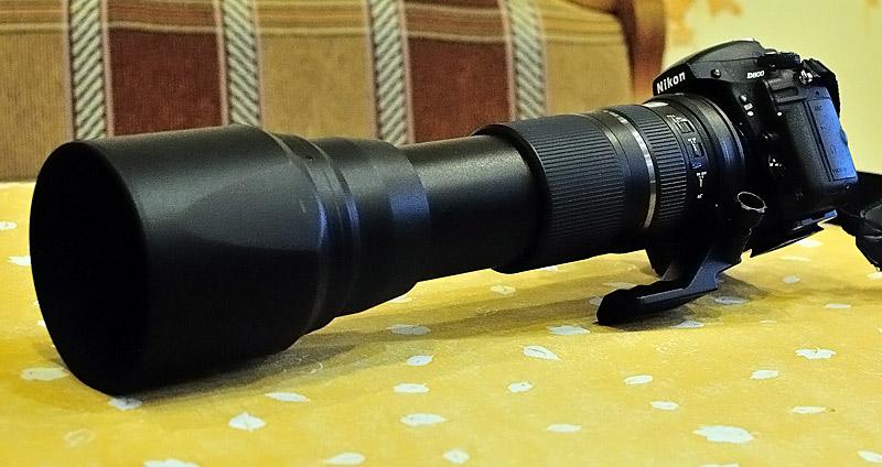 Nikon D800+Tamron 150-600/5-6.3