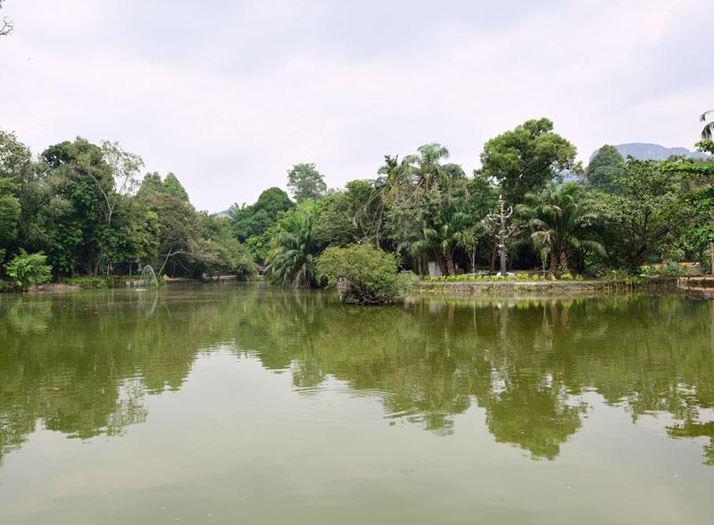 Зоопарк в Куала-Лумпуре. Пруд. 13