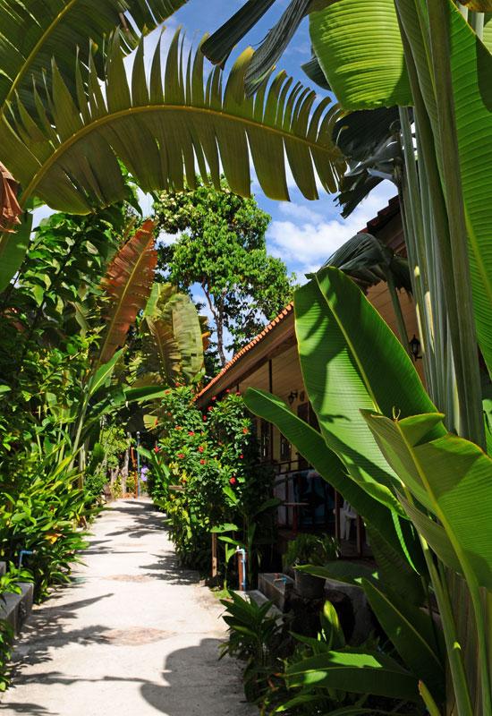Ко Липе. Bundhaya Resort. 35