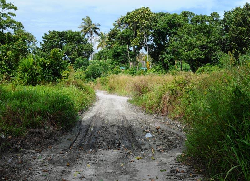 Ко Липе. Прогулка по острову. Ko Lipe. 194