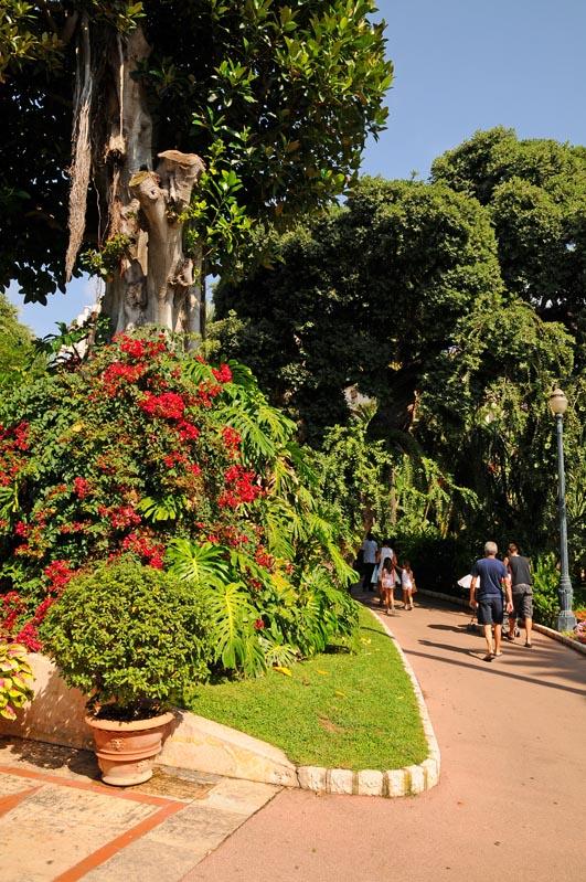 Монако. Парк перед казино. Monaco. Фото 18