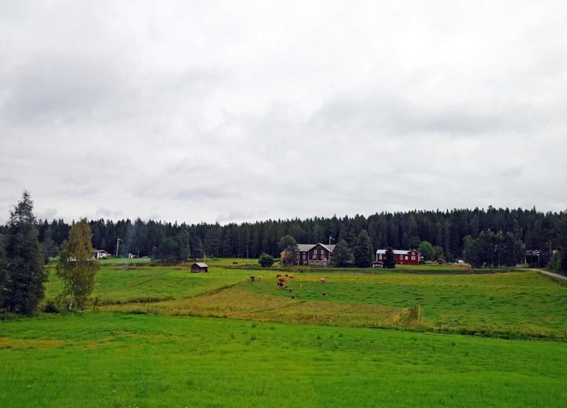 Стокгольм - Эстерсунд. 32 (c)Smyslik