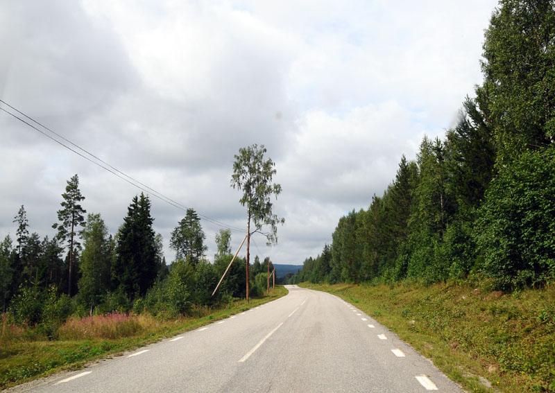 Стокгольм - Эстерсунд. (c)Smyslik. 50