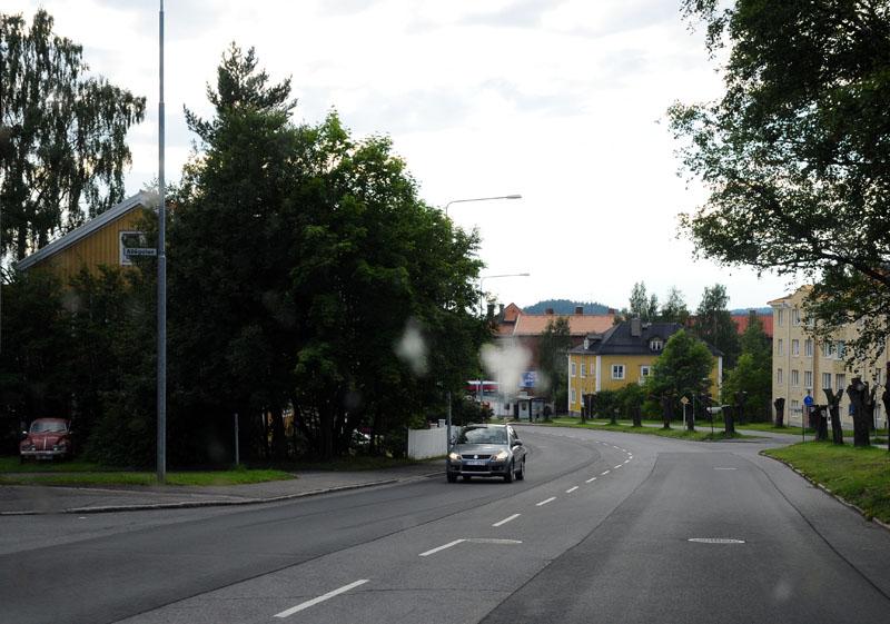 Стокгольм - Эстерсунд. (c)Smyslik. 82