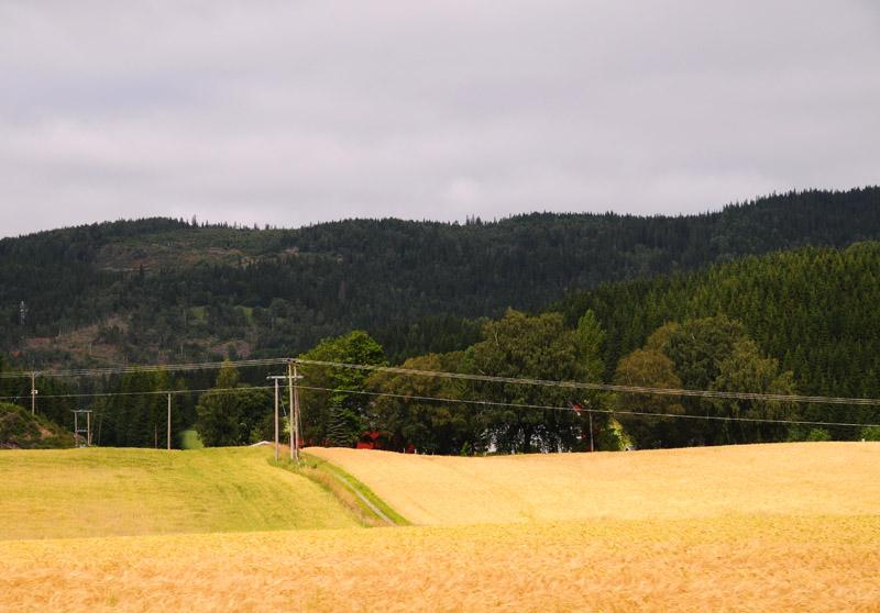 Эстерсунд - Тронхейм. Е14. (c)Smyslik 62