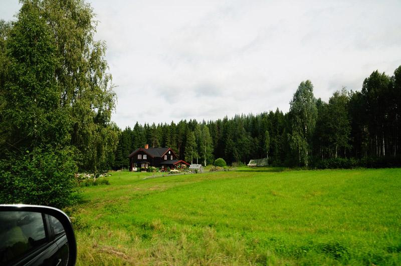 Шведский хутор. Неф - джпег.