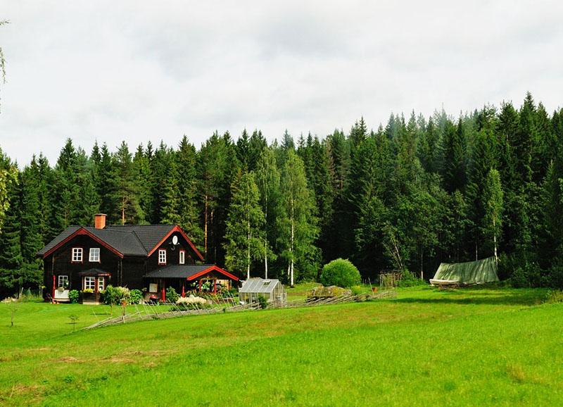 Шведский хутор. Ресайз.