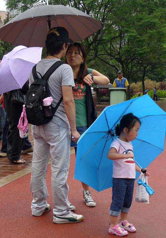 Зонтики. Ресайз.